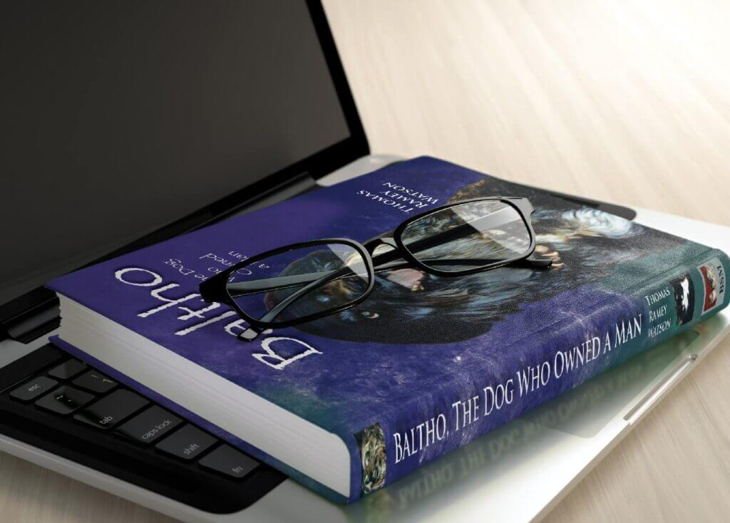 baltho book on laptop